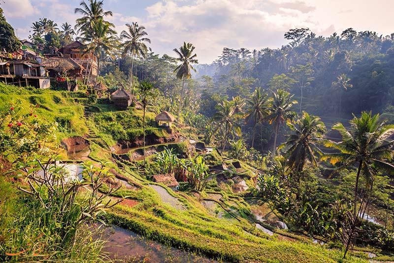 قبل از سفر به بالی بخوانید