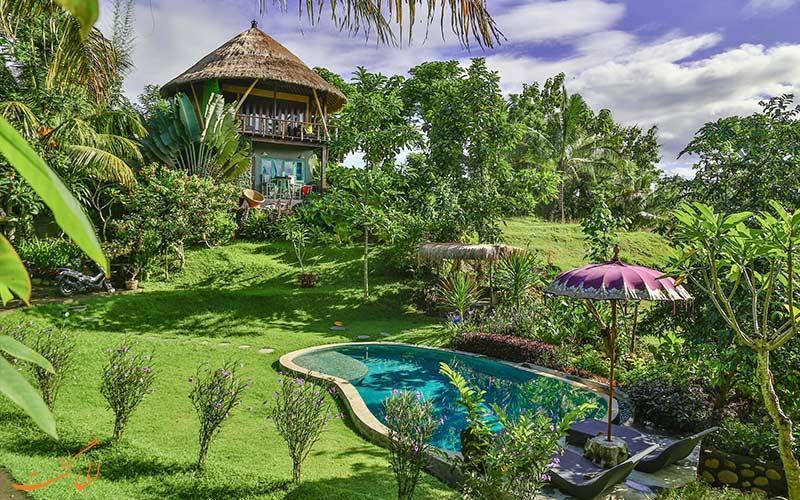 در سفر به بالی هتل های جنگلی را برای اقامت انتخاب کنید!