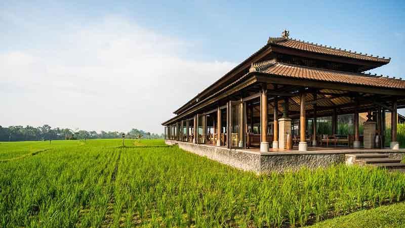 در این هتل های بالی اقامتی رویایی داشته باشید