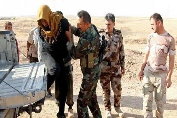 بازداشت 5 داعشی در دیالی در شرق عراق